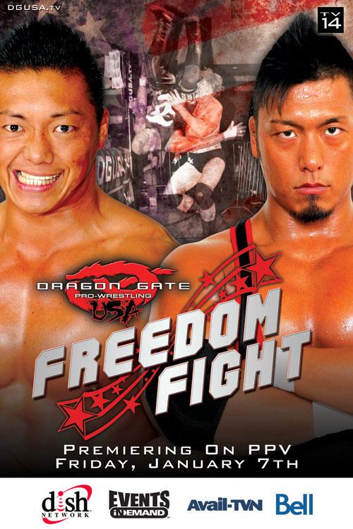freedomfight2010poster.jpg