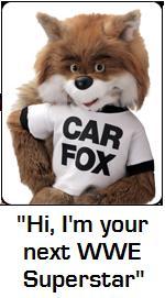 Car_Fox.JPG