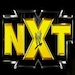 NXT6logo_24.jpg