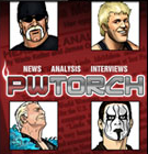 PWTorchIcon_135_16.png