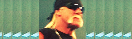 HoganHulk_TNA2012_Wide_TBpic_1.png