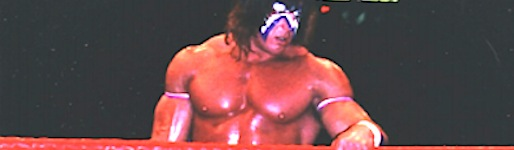 UltimateWarriorWK_wide2_8.jpg
